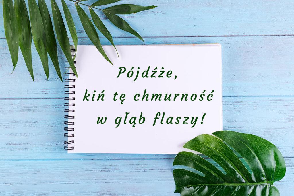Dekoracyjne fonty z polskimi znakami, czcionka courgette